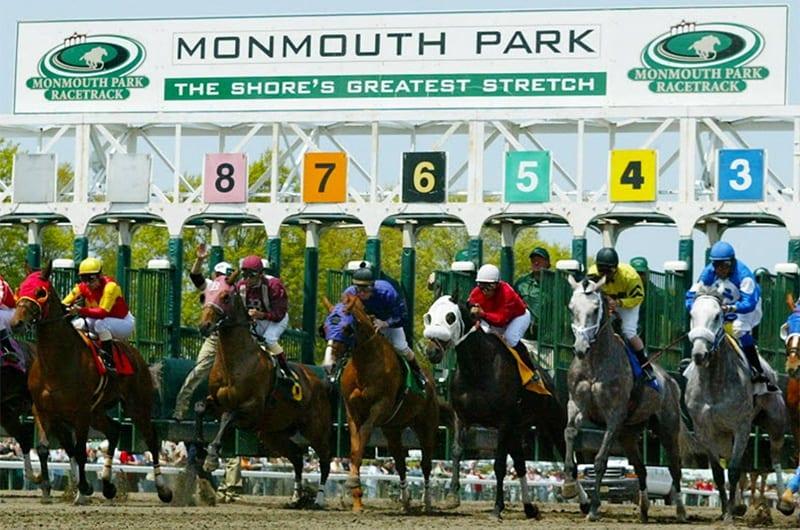Sports Betting horse