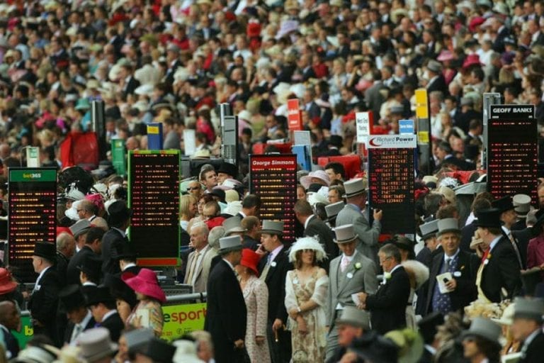 Ascot racing and gambling news
