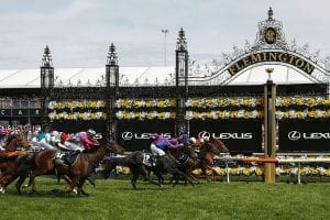 Melbourne Cup betting news